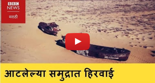 Youtube post by BBC News Marathi: Could planting a forest on Uzbekistan's dried out Aral Sea? (BBC News Marathi)