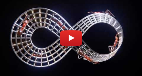 Publicación de Youtube por romullus3d: Moebius strip's ants
