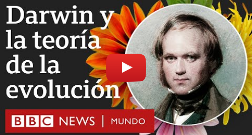 Publicación de Youtube por BBC News Mundo: La teoría de la evolución de Darwin explicada en 6 fascinantes minutos | BBC Mundo
