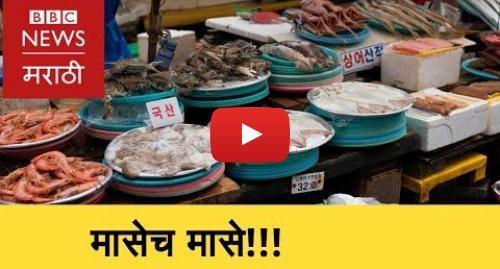 Youtube post by BBC News Marathi: Japan's 83 Year Old Fish Market । जपानचा 83 वर्षं जुना मासळी बाजार (BBC News Marathi)