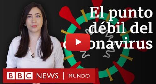 Publicación de Youtube por BBC News Mundo: El punto débil del coronavirus que encontró una física mexicana y cómo puede servir para bloquearlo