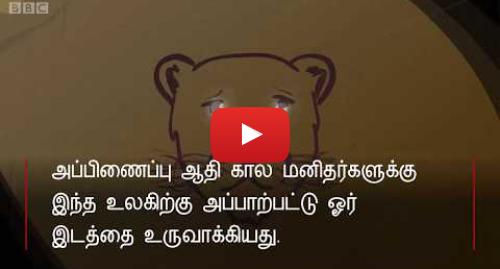 யூடியூப் இவரது பதிவு BBC News Tamil: 40,000 ஆண்டுகளுக்கு முந்தைய ஆதிகால 'சிங்க மனிதர்'