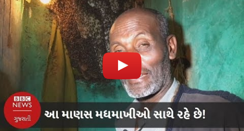 Youtube post by BBC News Gujarati: આ માણસ મધમાખીઓ સાથે રહે છે! (બીબીસી ન્યૂઝ ગુજરાતી)