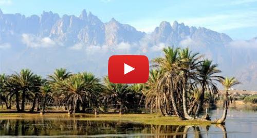 Publicación de Youtube por BBC News Mundo: Socotra, las fascinantes y remotas islas que parecen de otro planeta