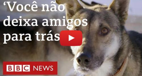 YouTube post de BBC News Brasil: Coronavírus  'Você não deixa amigos para trás', diz criador após ficar preso com huskies no Alasca