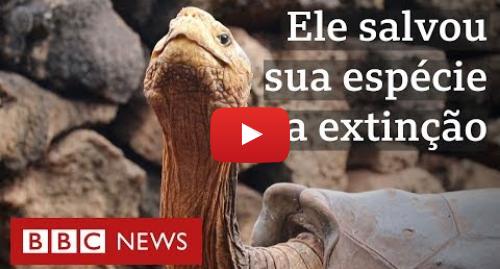 YouTube post de BBC News Brasil: Diego, tartaruga gigante que salvou a própria espécie, vai se aposentar em Galápagos