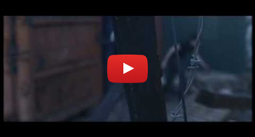 """Youtube post by Epitaph Records: You Me At Six - """"Jealous Minds Think Alike"""""""