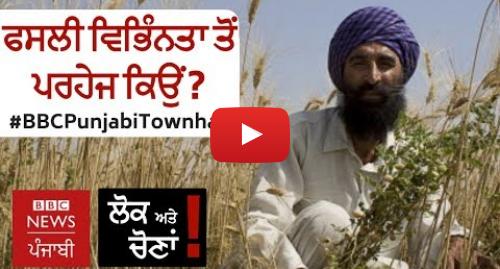 Youtube post by BBC News Punjabi: ਪੰਜਾਬ ਵਿੱਚ ਕਿਸਾਨ ਫਸਲੀ ਵਿਭਿੰਨਤਾ ਕਿਉਂ ਅਪਣਾ ਨਹੀਂ ਰਹੇ? I BBC NEWS PUNJABI