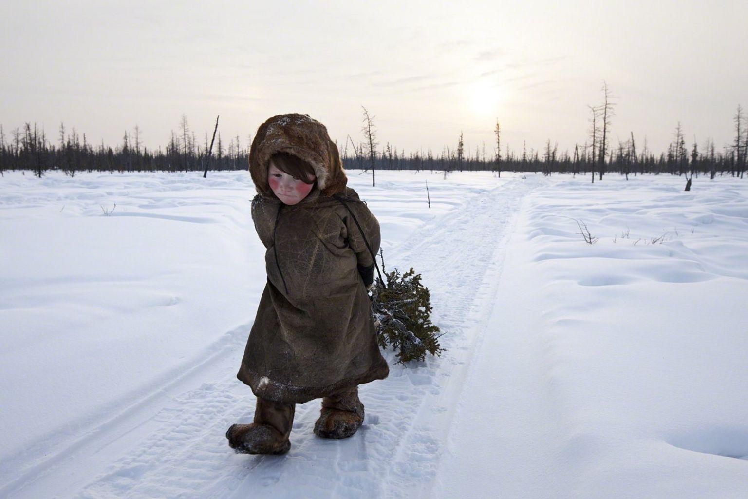Nenet girl - Siberia, Russia