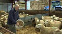 Brian Bowen at his farm