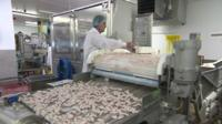 Man at a scampi factory production line