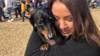 Dachshunds from all over the country meet for a stroll on the beach.