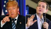 Donald Trump/Ted Cruz