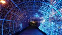 Norwich tunnel of light