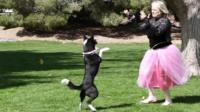Woman dancing with her dog
