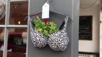 Bra hanging basket