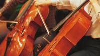 Musicians play the cello