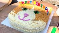 Wilbur's cake