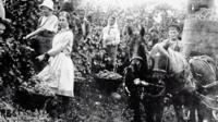 Немецкие переселенцы