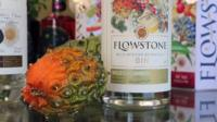 Flowstone gin bottle and wild cucumber