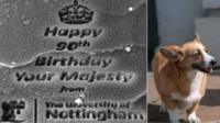 Queen's birthday message on corgi hair