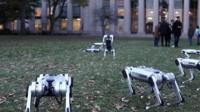 Девять четвероногих роботов исполнили сальто назад.