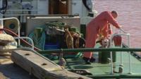 Fishing boat in Peterhead harbour