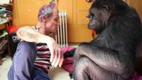 Bassist Flea with Koko the gorilla