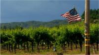 US flag over wine country