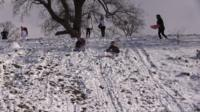 Children sledging in the snow