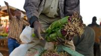 Khat being sold at a market in Maua, Kenya