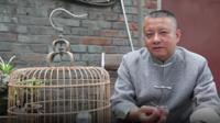 Liu Qingchi