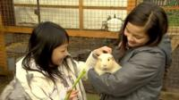 Children with a guinea pig
