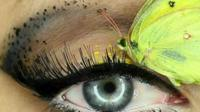 Dead insect eye make-up art