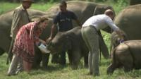 The Duke and Duchess of Cambridge feed elephants in India