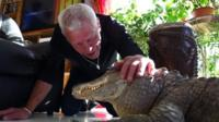 Philippe Gillet with one of his alligators (17 September 2018).