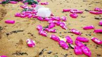 Pink bottles wash up on Cornish coast