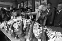 Esmond Bradley Martin (3rd R) inspects confiscated rhino horns, elephant tusks and ivory at Taipei Zoo