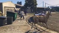 Deer in GTA V
