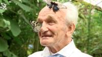 Томми Хаган в саду бабочек