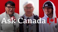 Ask Canada composite of voters