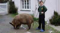 Samuel with his pet pig.