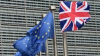 European and British flags