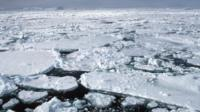 Weddell Sea ice