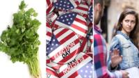 Coriander, 2016 US Presidential campaign badges and a woman being pestered on the street.