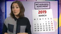 Elizabeth Glinka talking Brexit