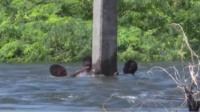 People cling to an electricity post with flood water up to head height