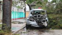 Car hit by fallen tree