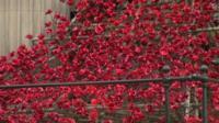 Cascade of ceramic poppies