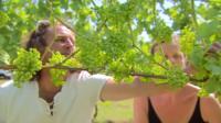 Russ and Phillipa in the vineyard